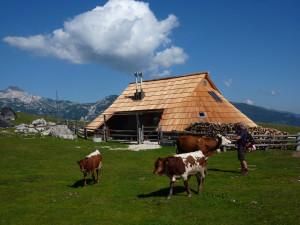 il villaggio dei pastori