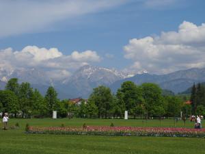 le alpi di Kamnik fanno da sfondo all'Arboretum