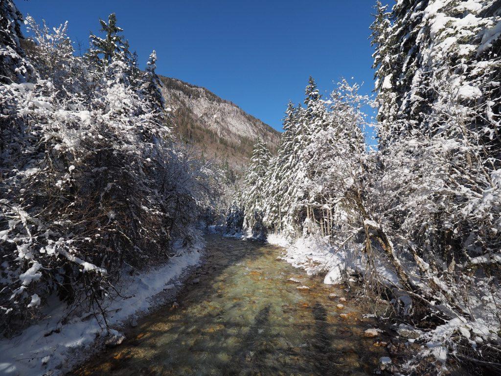 La Triglavska bistrica in inverno