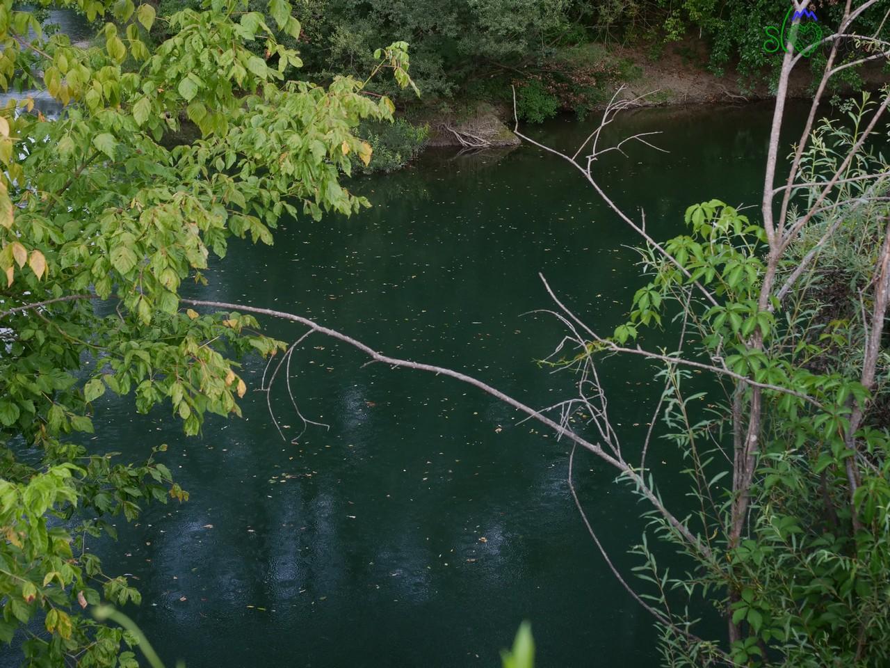 La natura incontaminata del fiume Vipacco/Vipava