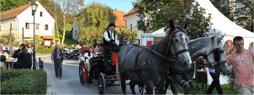 La festa dei contadini a Svečina - (c) TIC Svečina