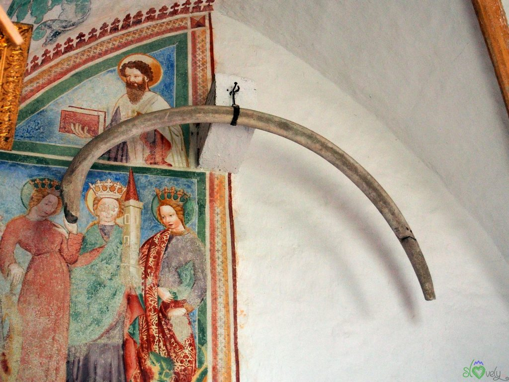 Anche un dente di balena tra gli affreschi!