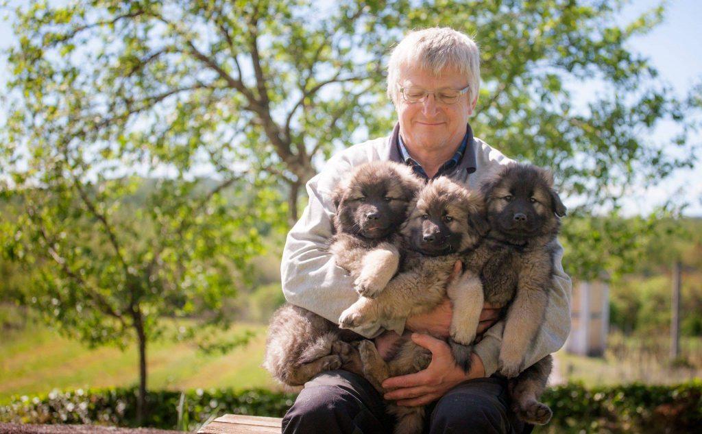 3 meravigliosi cuccioli in braccio a Davorin Lisjak