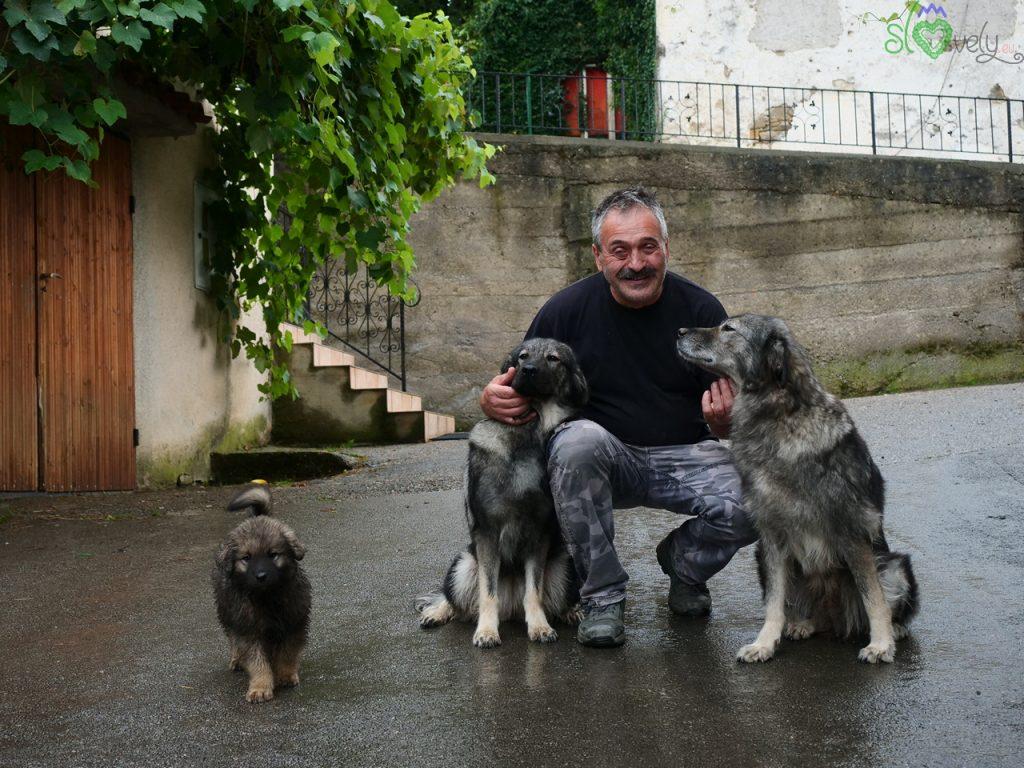 Damijan Vitez con i suoi splendidi cani
