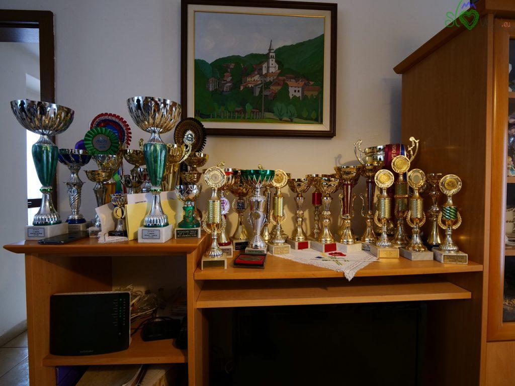 I numerosissimi premi vinti dall'allevamento Kamen gorska
