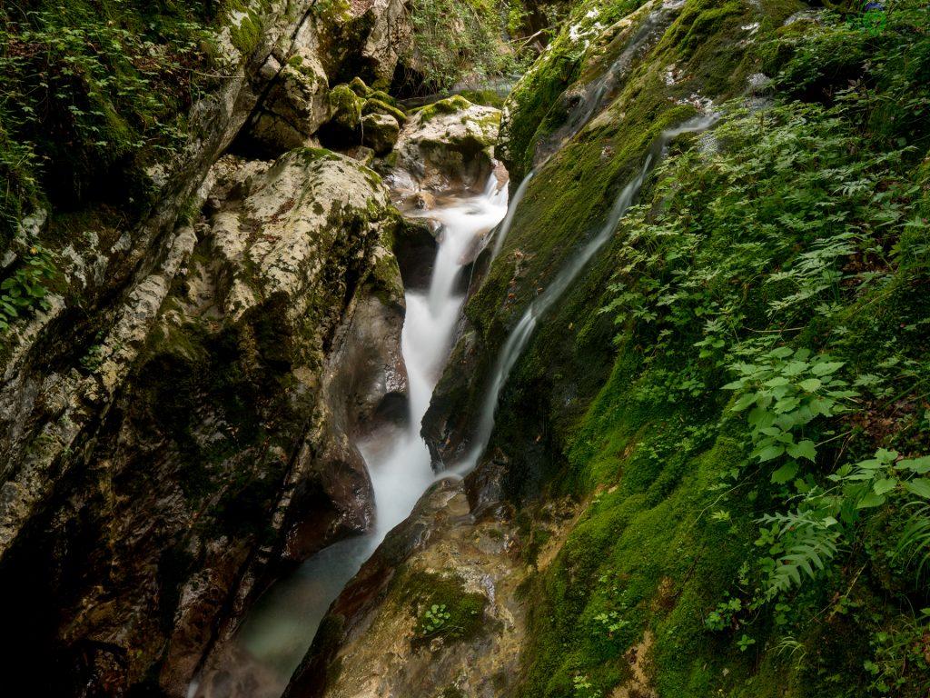 Natura allo stato puro nel Šunikov Vodnj Gaj