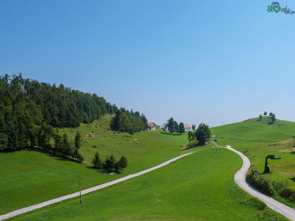 I verdi pascoli di Vojsko.