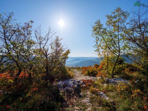 Il sentiero negli splendidi colori autunnali.