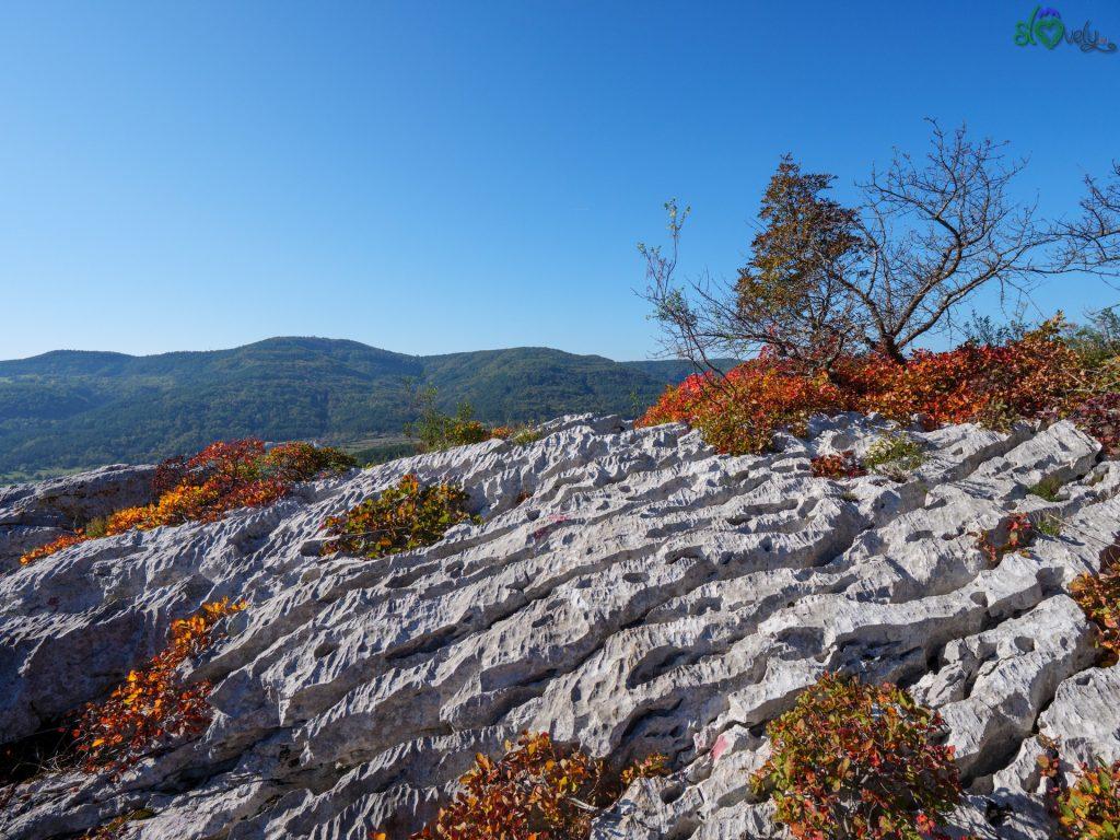 Le pietre carsiche in autunno.