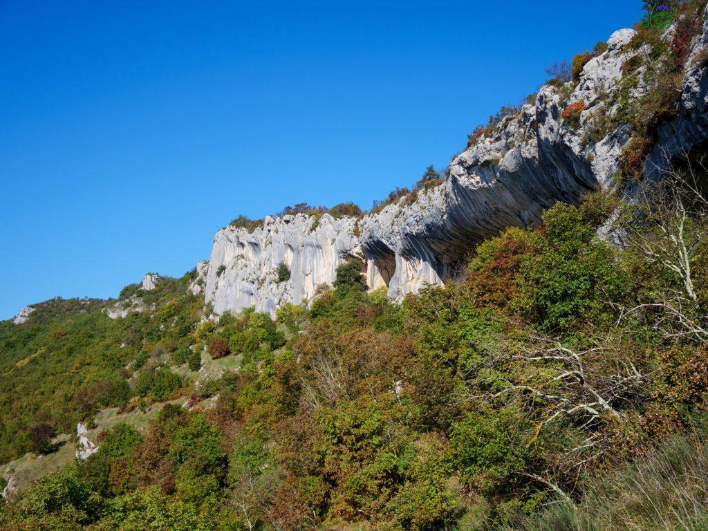 """Le """"orecchie dell'Istria"""" di Veli Badin."""