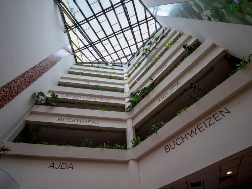 La hall dell'Hotel Ajda.