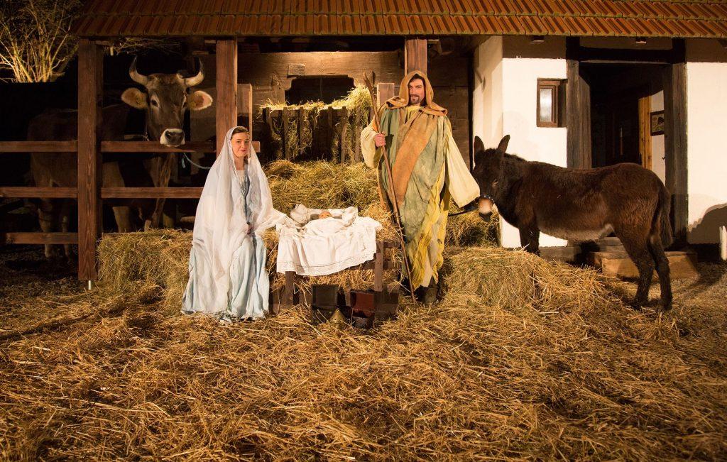 La Sacra Famiglia, con l'asinello, allo Zoo di Ljubljana - Eventi Natale Slovenia 2019