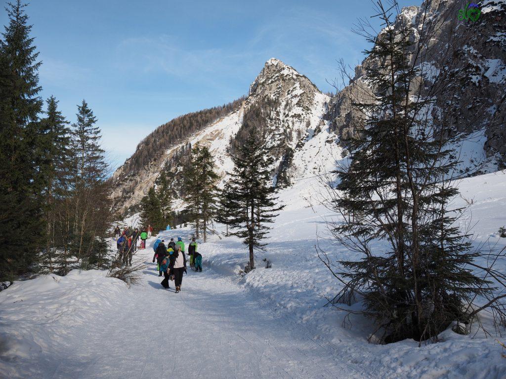 Da Planica alla valle Tamar nell'idillio invernale 2
