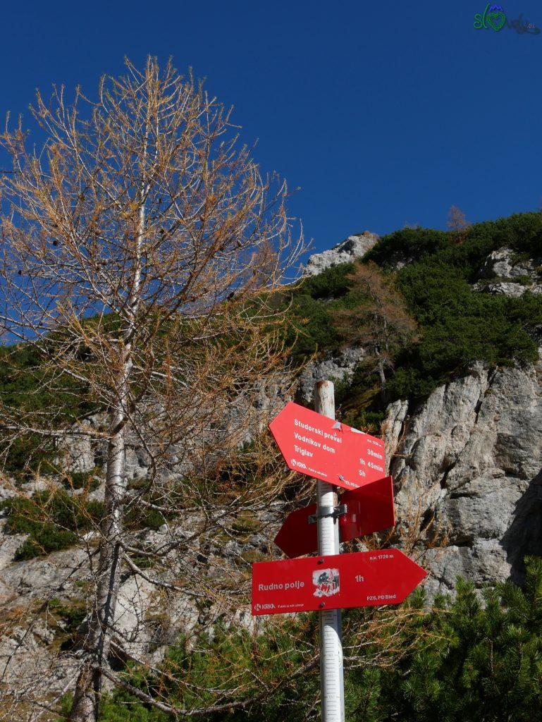 Proseguiamo in discesa prima verso Rudno Polje, quindi per Planina Konjščica.