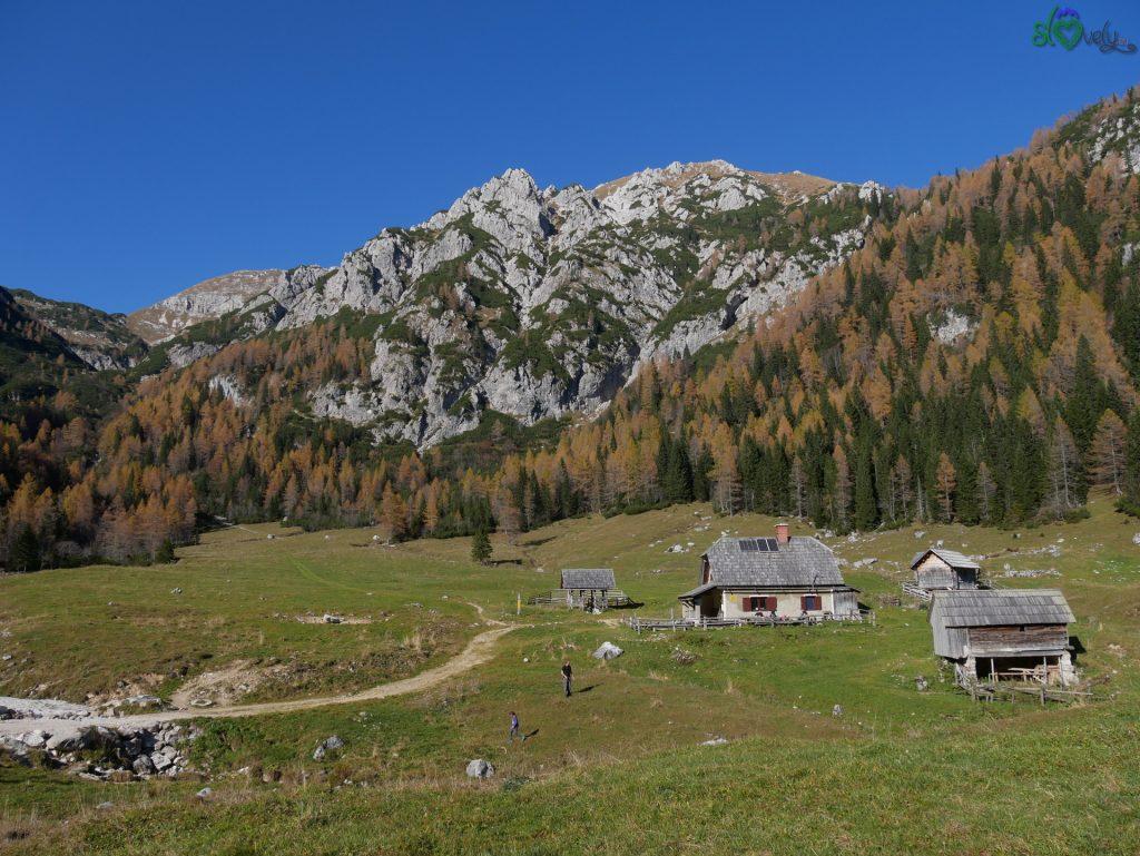 La malga di Planina Konjščica, con il caseificio e la vetta del Viševnik.