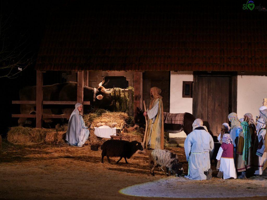 La sacra Famiglia, con le pecorelle e i pastori. - Zoo Ljubljana