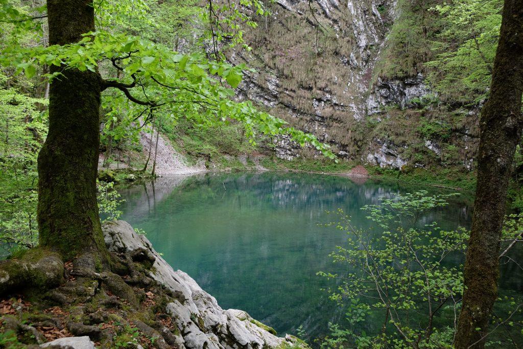 Le acque smeraldine del Divje Jezero, vicino a Idrija.