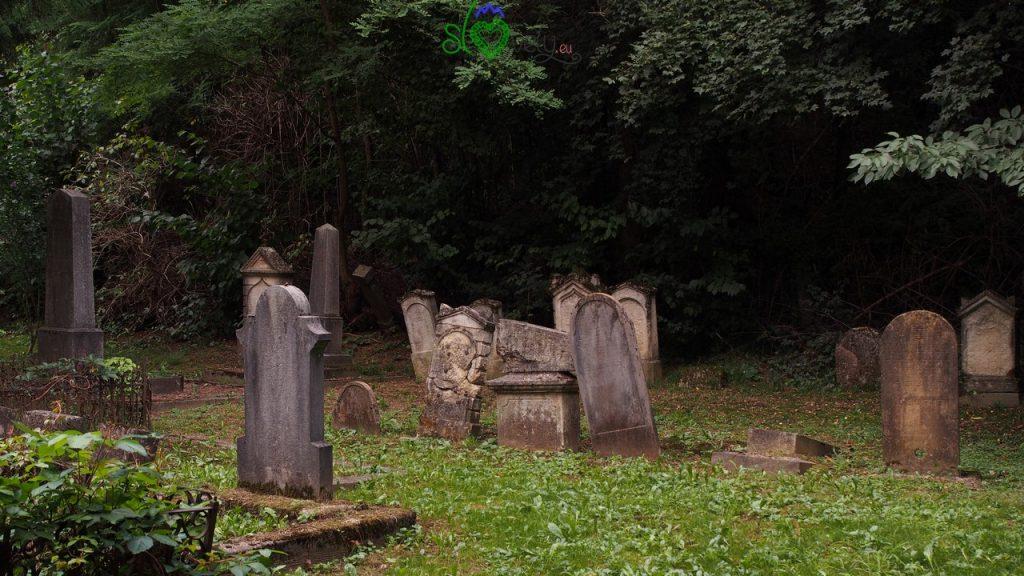 Lapidi nel cimitero ebraigo di Dolga Vas.
