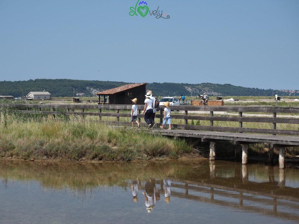 Percorsi per i turisti, rigorosamente a piedi, costeggiano le vasche di raccolta del sale.