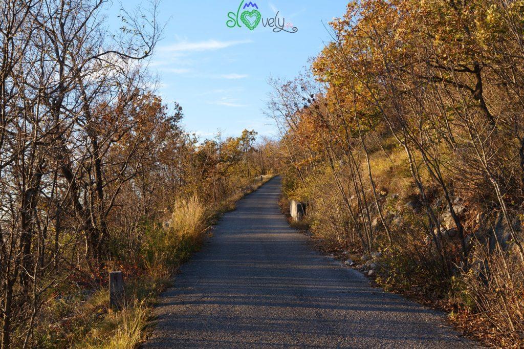La strada militare che sale sul Sabotino.