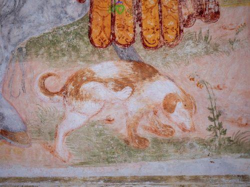 Anche un cane tra gli affreschi!
