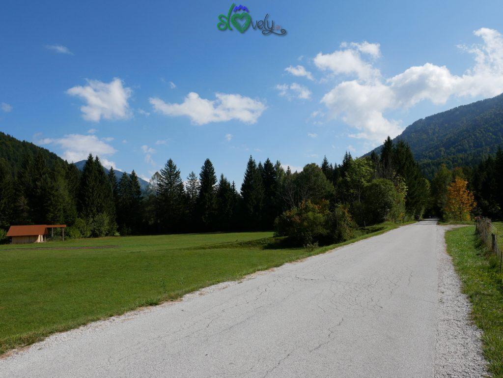 Il verde paesaggio lungo la ciclabile.