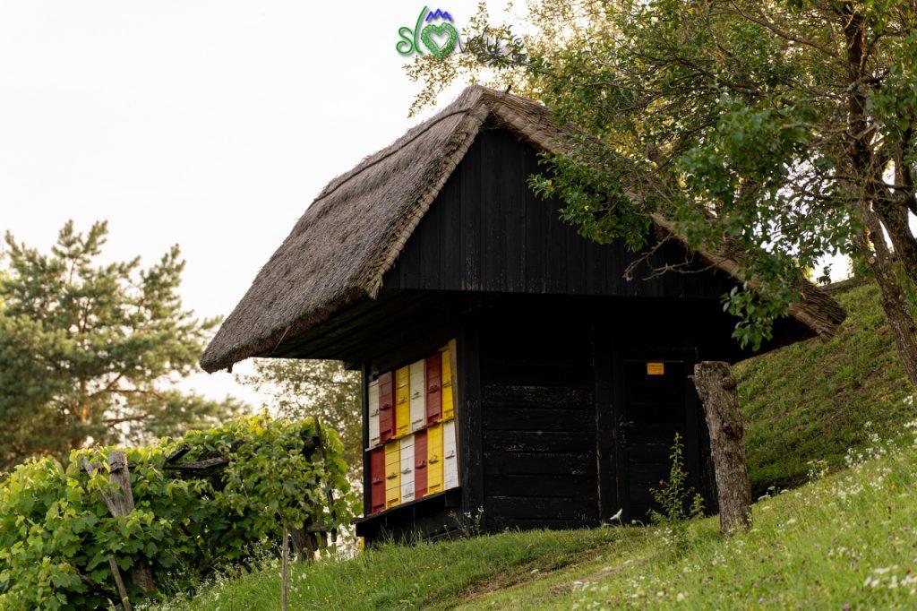 L'apiario del museo all'aperto di Rogatec.