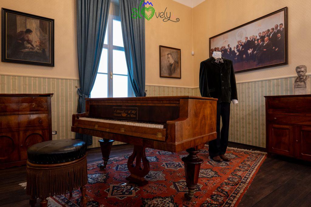 Il pianoforte di Hugo Wolf.